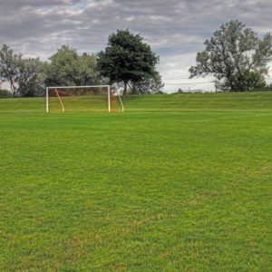 Image of a football pitch for the School sports facilities post