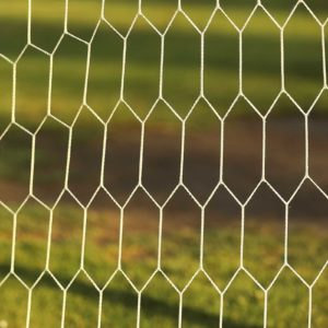 Image of a football net for the Moving between state and independent schools post